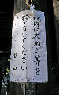 20061011motofumi