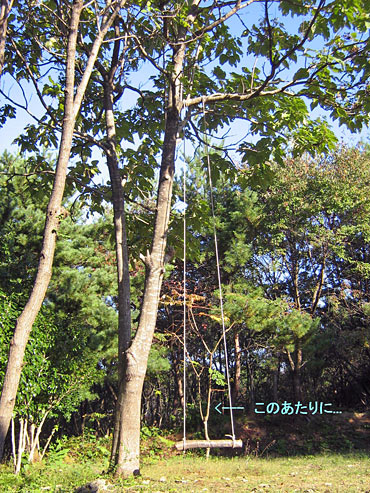 20071103yoshiko