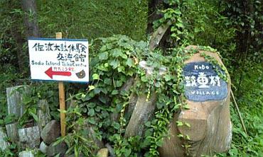 20080804shinichi