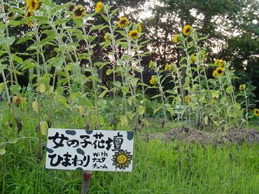 20080811eiichi2